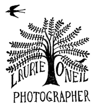 Laurie O'Neil Photography